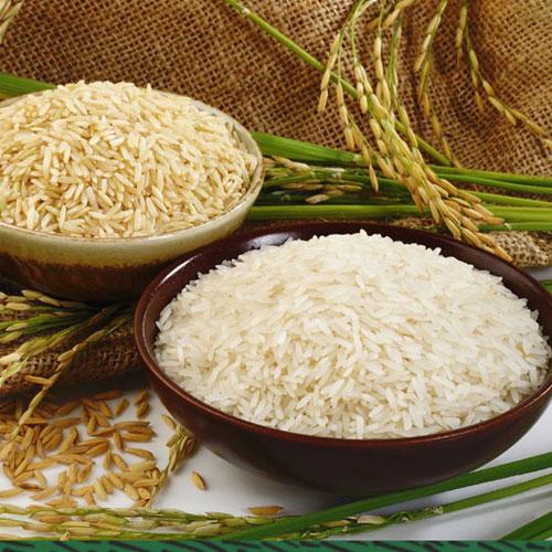 Chọn gạo theo khẩu vị