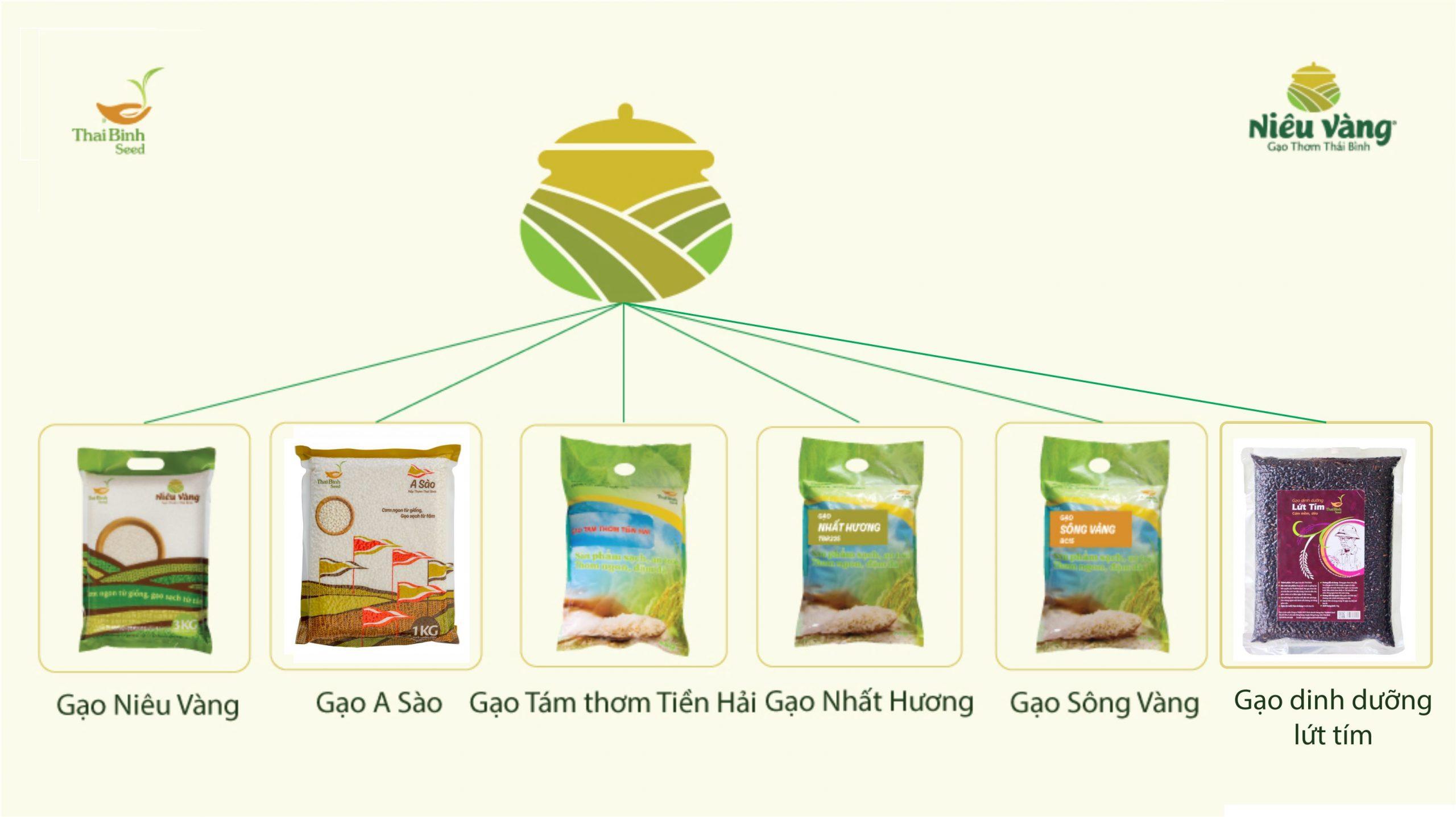 Bảng giá mới nhất của gạo sạch tinh khiết ThaiBinh Seed tin-tuc