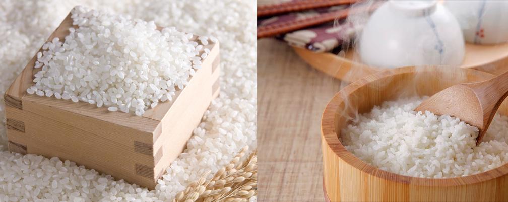 Tại sao gạo Nhật lại được nhiều người yêu thích? tin-tuc