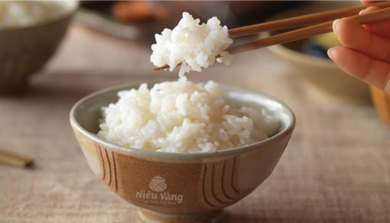 Gạo Japonica Nhật Bản có ngon không? tin-tuc