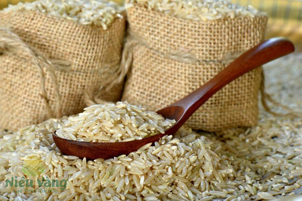 Có nên mua gạo giá rẻ hay không? tin-tuc