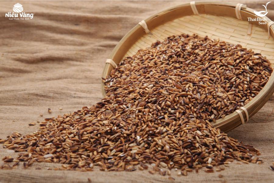 Người tiểu đường nên ăn loại gạo gì? tin-tuc