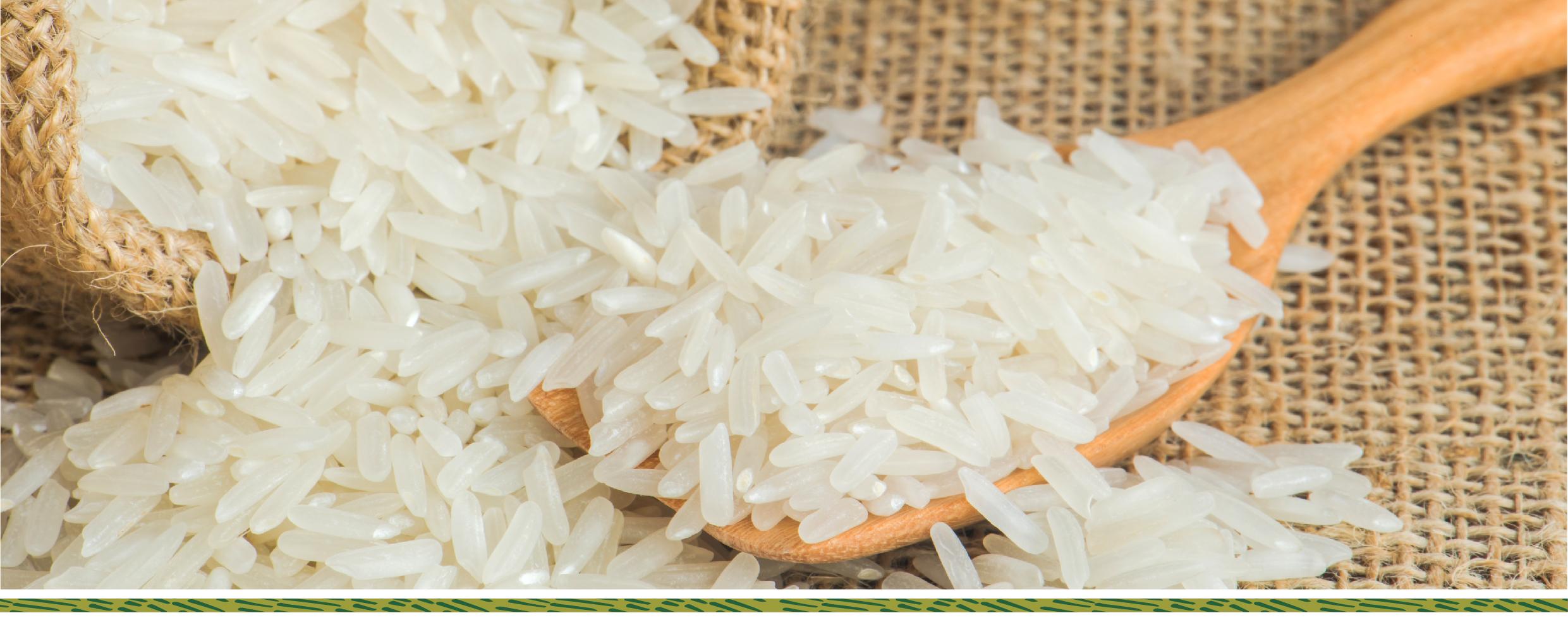 Kinh doanh gạo sạch quá dễ: không cần nhập hàng và kho bãi tin-tuc