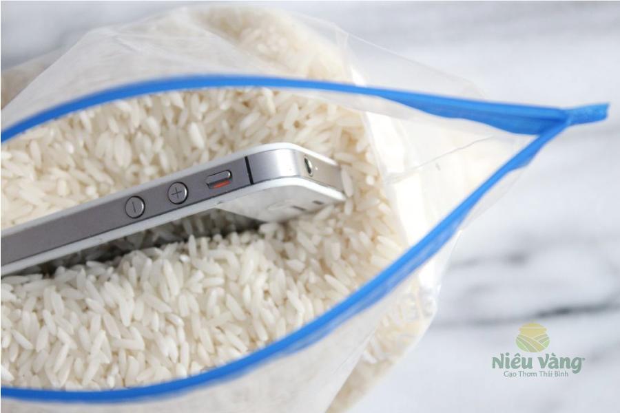 Những công dụng thú vị của gạo không phải ai cũng biết – Phần 1 tin-tuc
