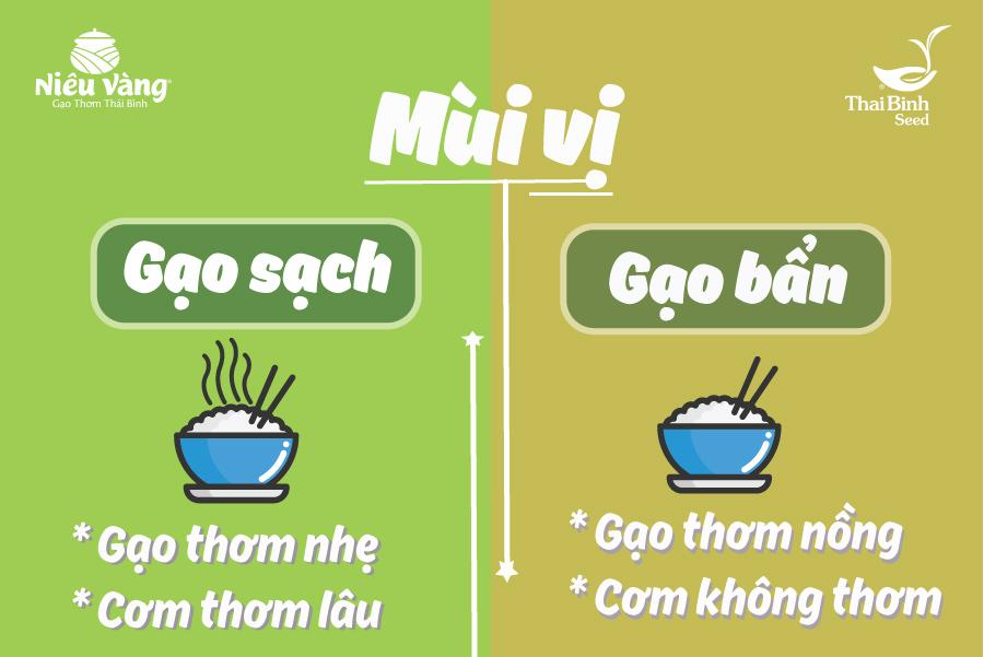 Gạo sạch là gì? 5 cách phân biệt Gạo Sạch và Gạo Bẩn tin-tuc