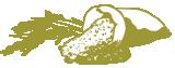 """ThaiBinh Seed – Gần 50 năm """"Cơm ngon từ giống, gạo sạch từ tâm"""""""