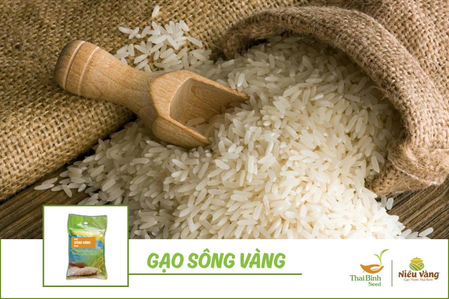 5 loại gạo dẻo ngon sạch mà lứa tuổi nào ăn cũng thấy mê tin-tuc