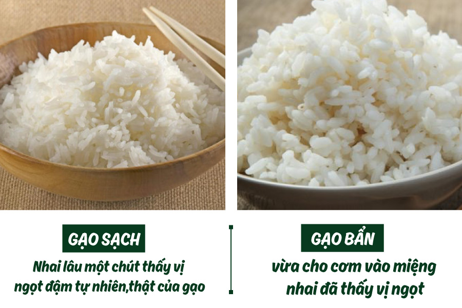 3 lầm tưởng về gạo ngon mà hầu như ai cũng mắc phải tin-tuc